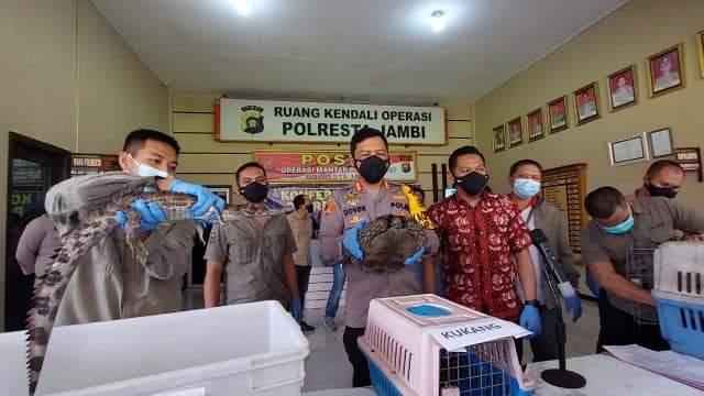 Perdagangan satwa dilindungi di Jambi